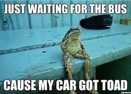 frog heteronym