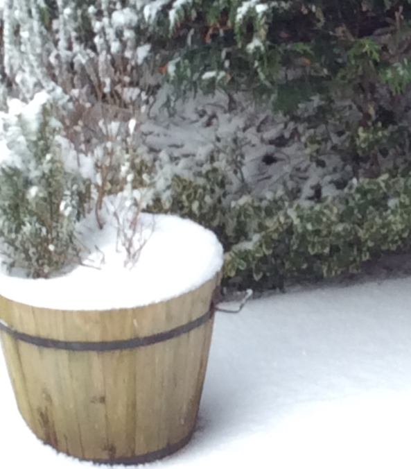 snow_2018